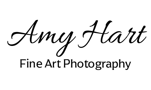 Amy Hart~Fine Art