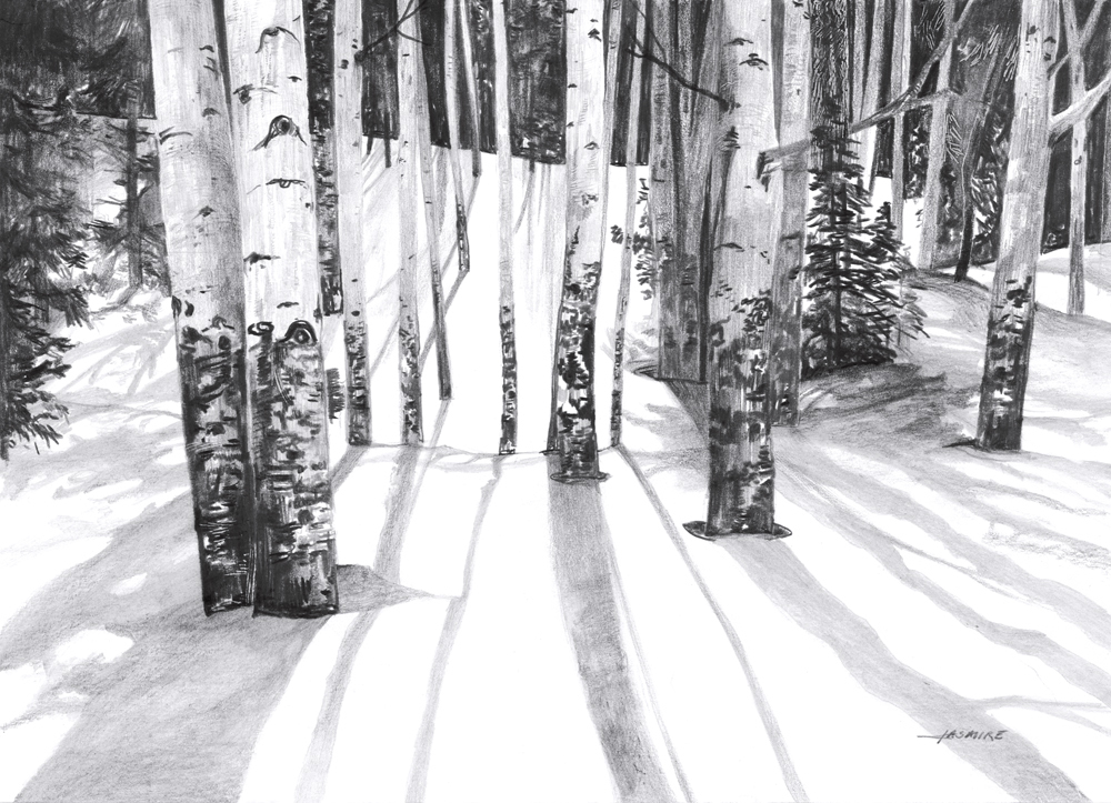Aspen_and_shadows_1000px_z15tms