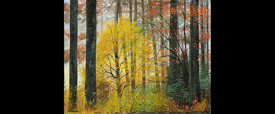 Autum_forest_96ge_rru5nf