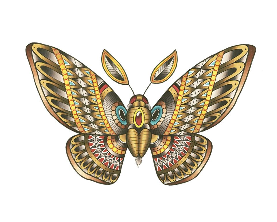 Moth_y0pc9e