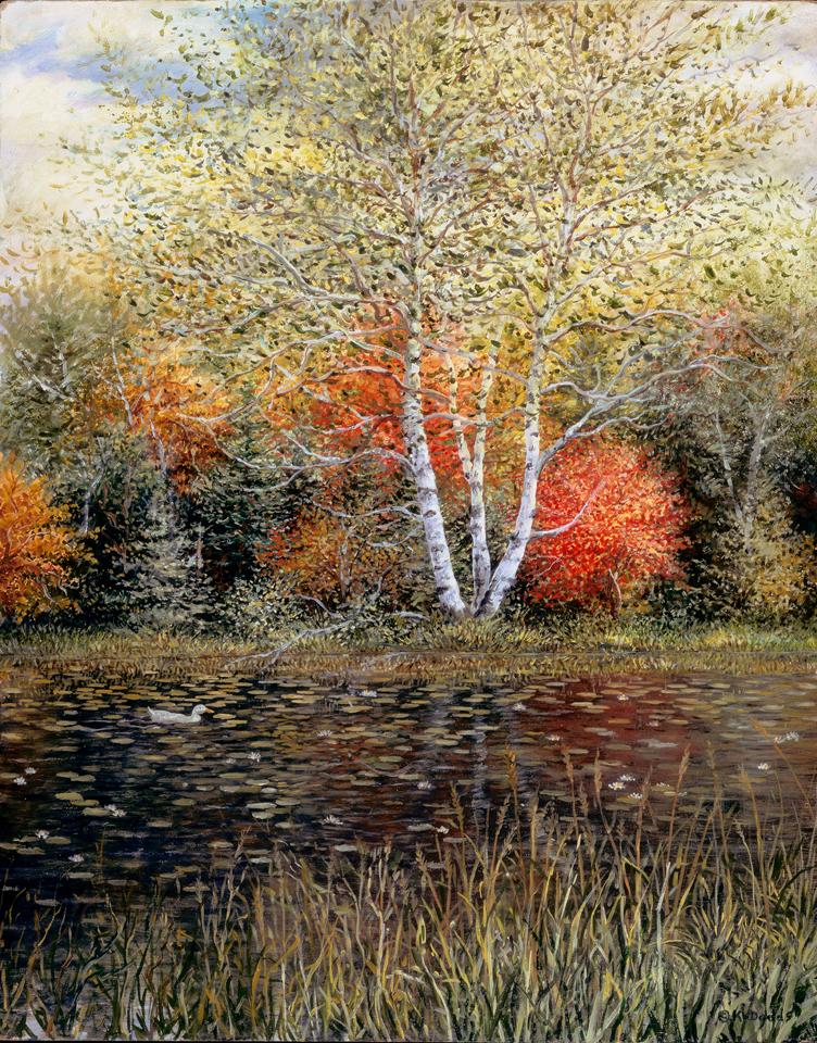 Autumn_colours_lobrbd