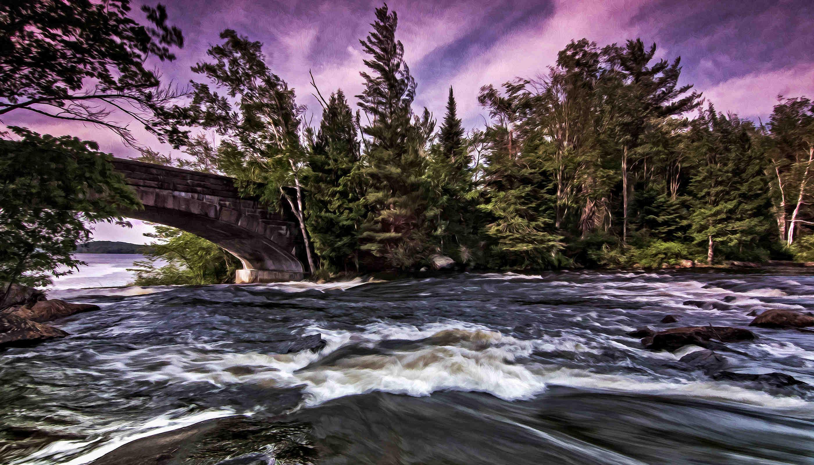 25_bog_river_y7yeze