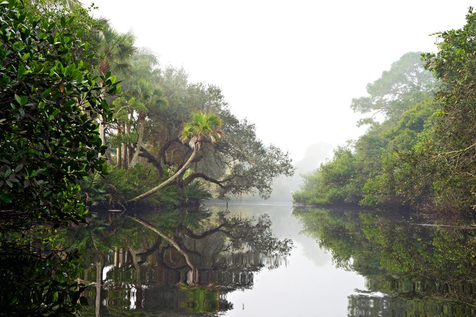 02386_imperial_river_fog_4x6_cqb84h