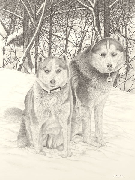 Huskies_umiynh