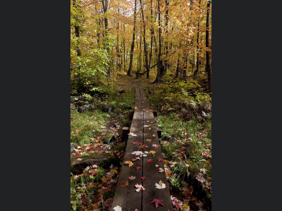 An_autumns_hike_gdbpv2