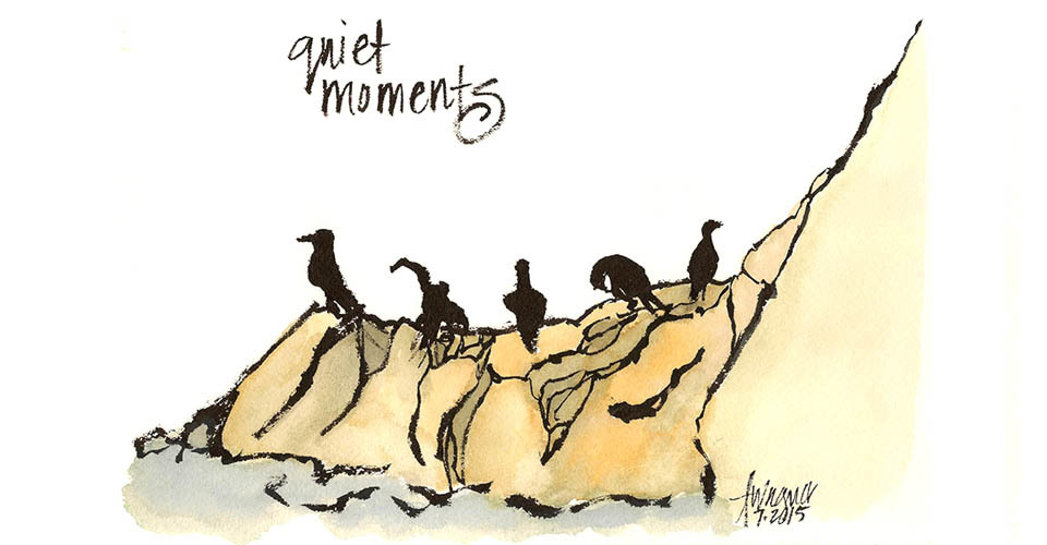Awagner_point_reyes_-bird_-_quiet_moments-960_nc06cd
