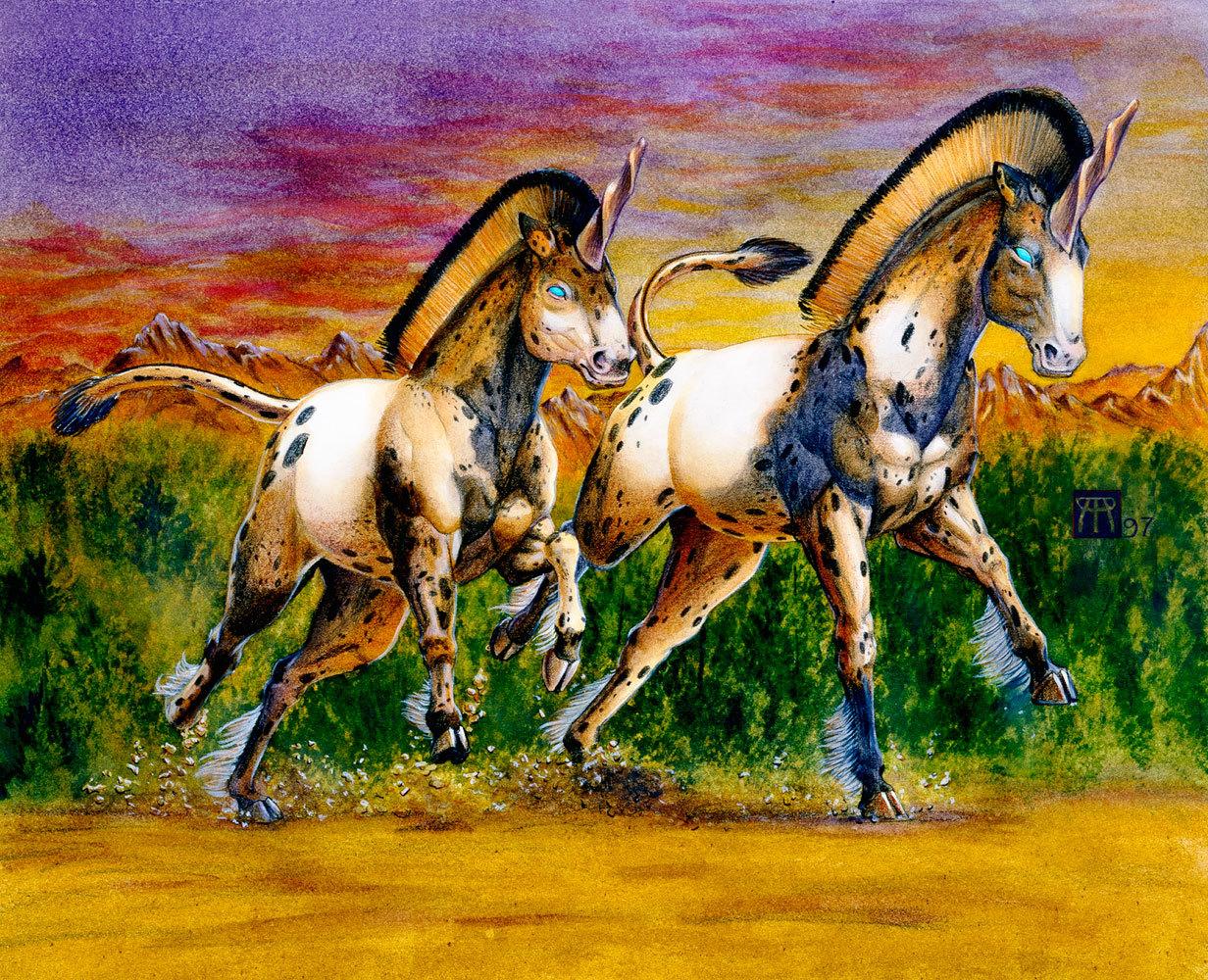 Unicorns in sunset 1000 px ezvkda