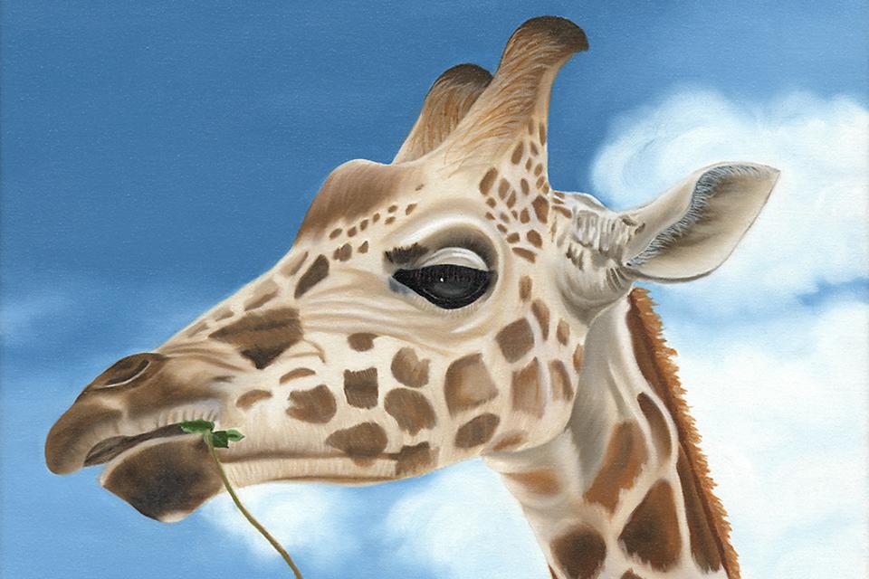 Terrisdavis_giraffe_960x640_ealdya