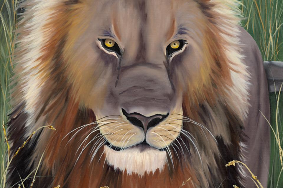 Terrisdavis_lion_960x640_kif1mz