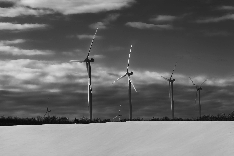 <div class='title'>           Renewable-bggvqu         </div>