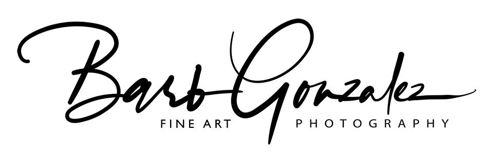 barbgonzalezphotography