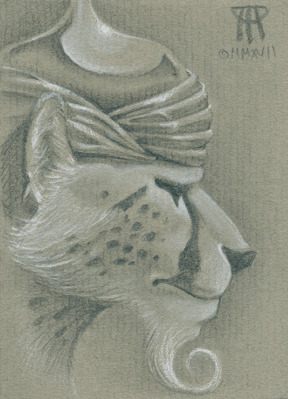 Cat warrior i6at43