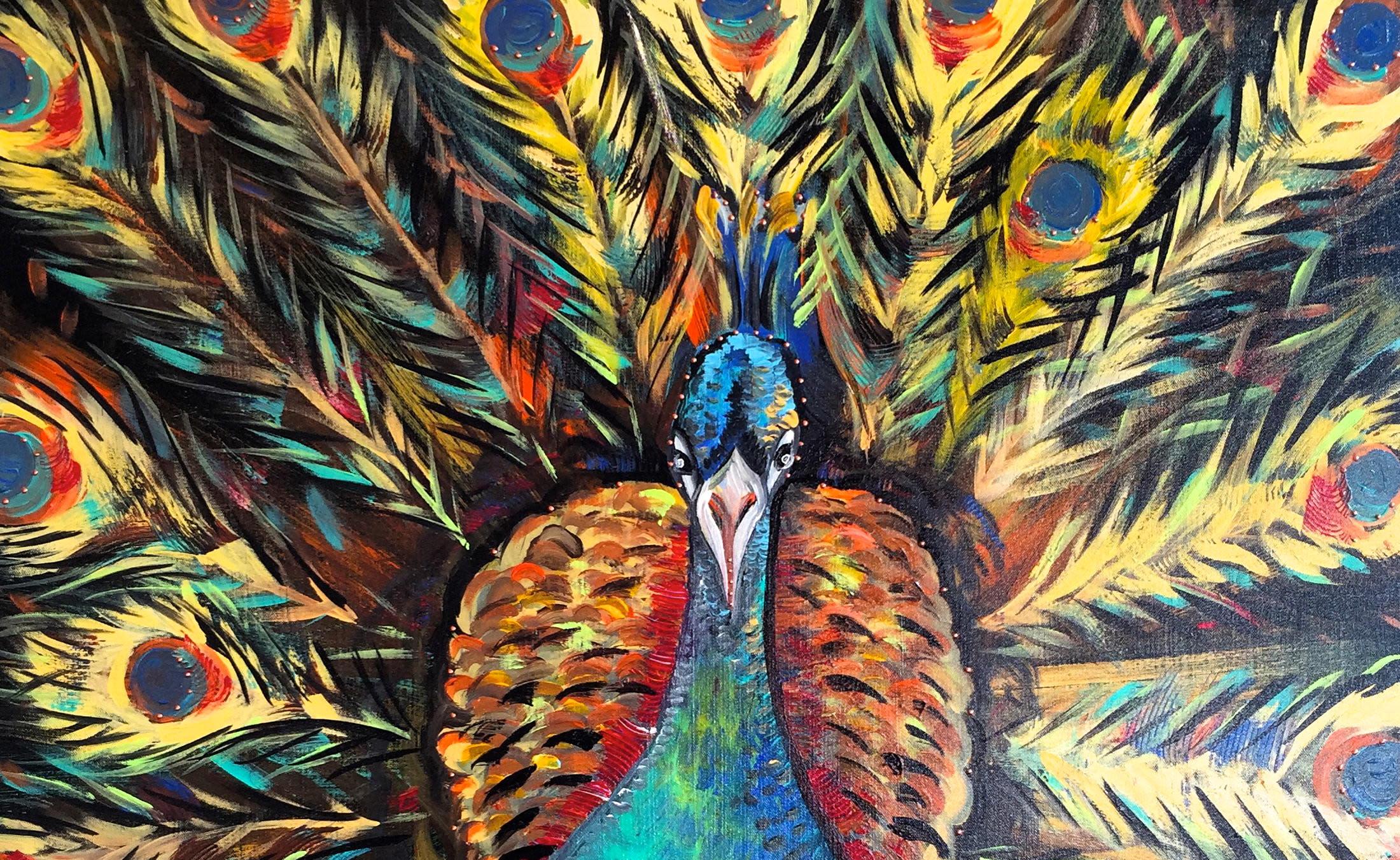 <div class='title'>           Peacock-rvhwcn         </div>
