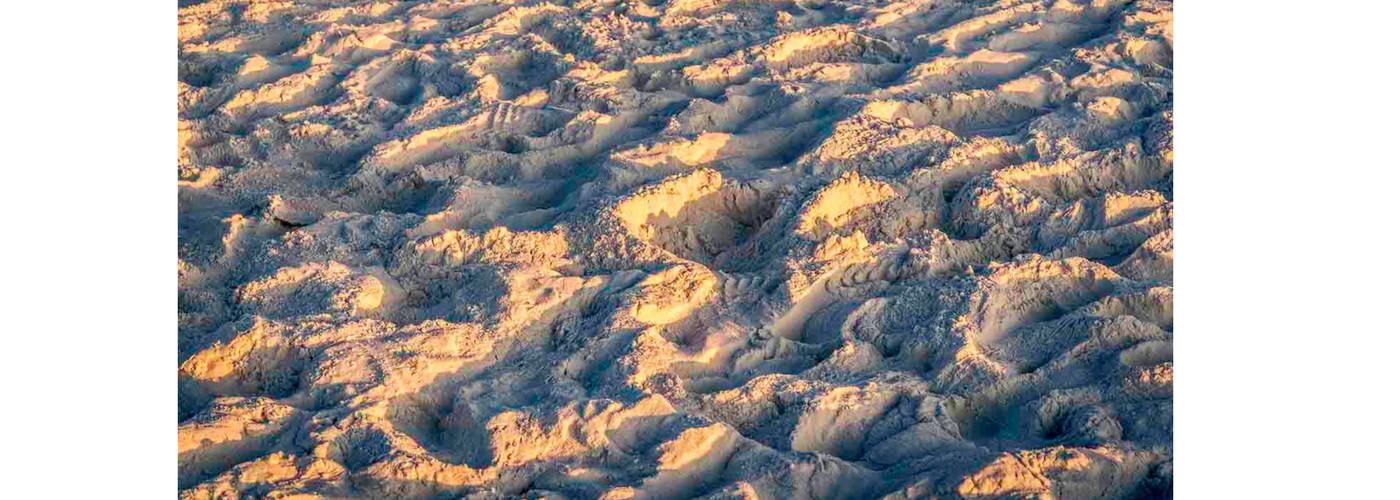 <div class='title'>           Banner-Sunrise-Symphony-in-Sand-o2hu7e         </div>