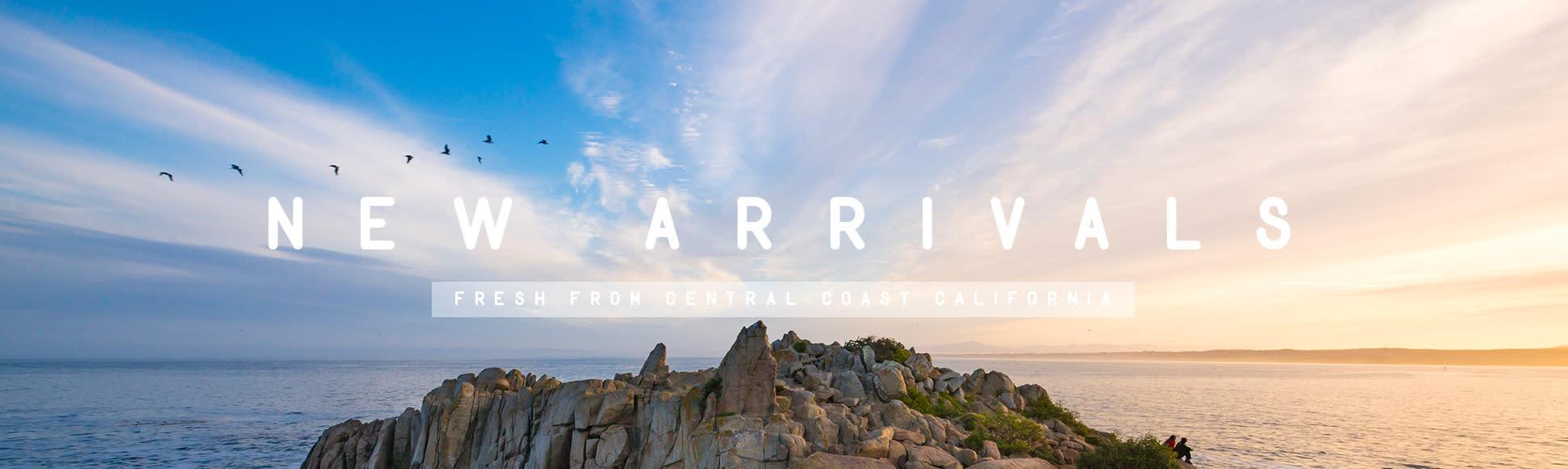 <div class='title'>           loa banner new arrivals sfw         </div>                 <div class='description'>           New Arrivals Central Coast Cali         </div>