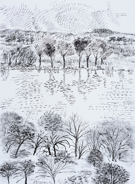 From across the lake graphite charcoal drawing nu7o1e