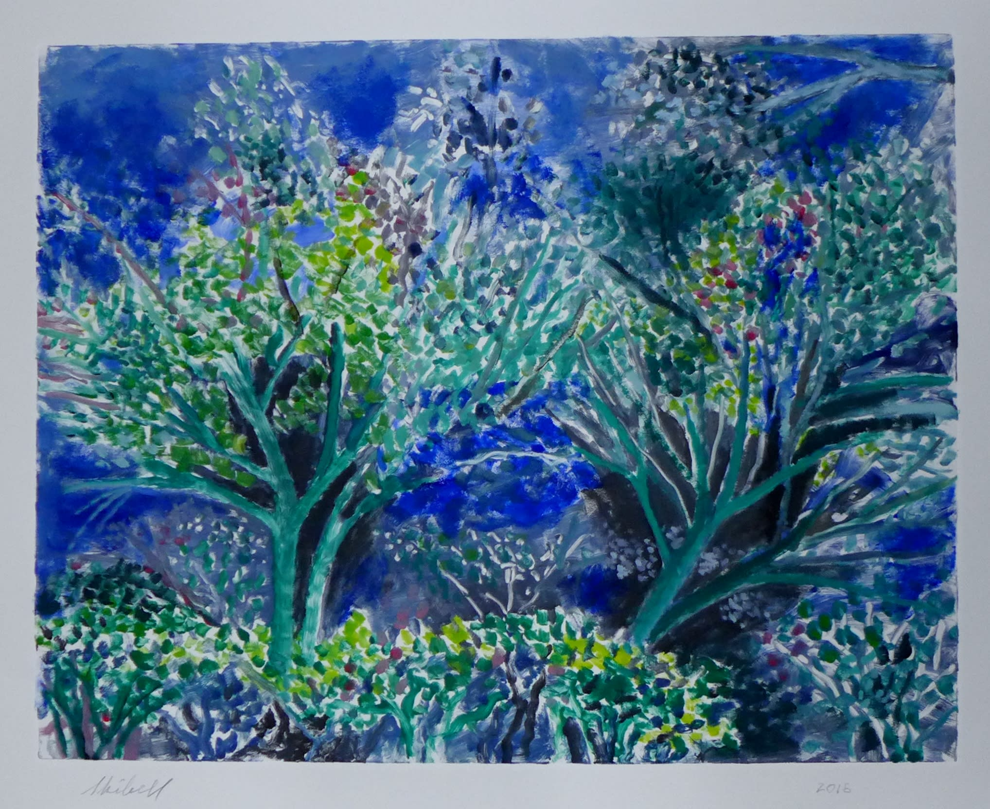 My backyard two blue trees landscapes hbnwxp