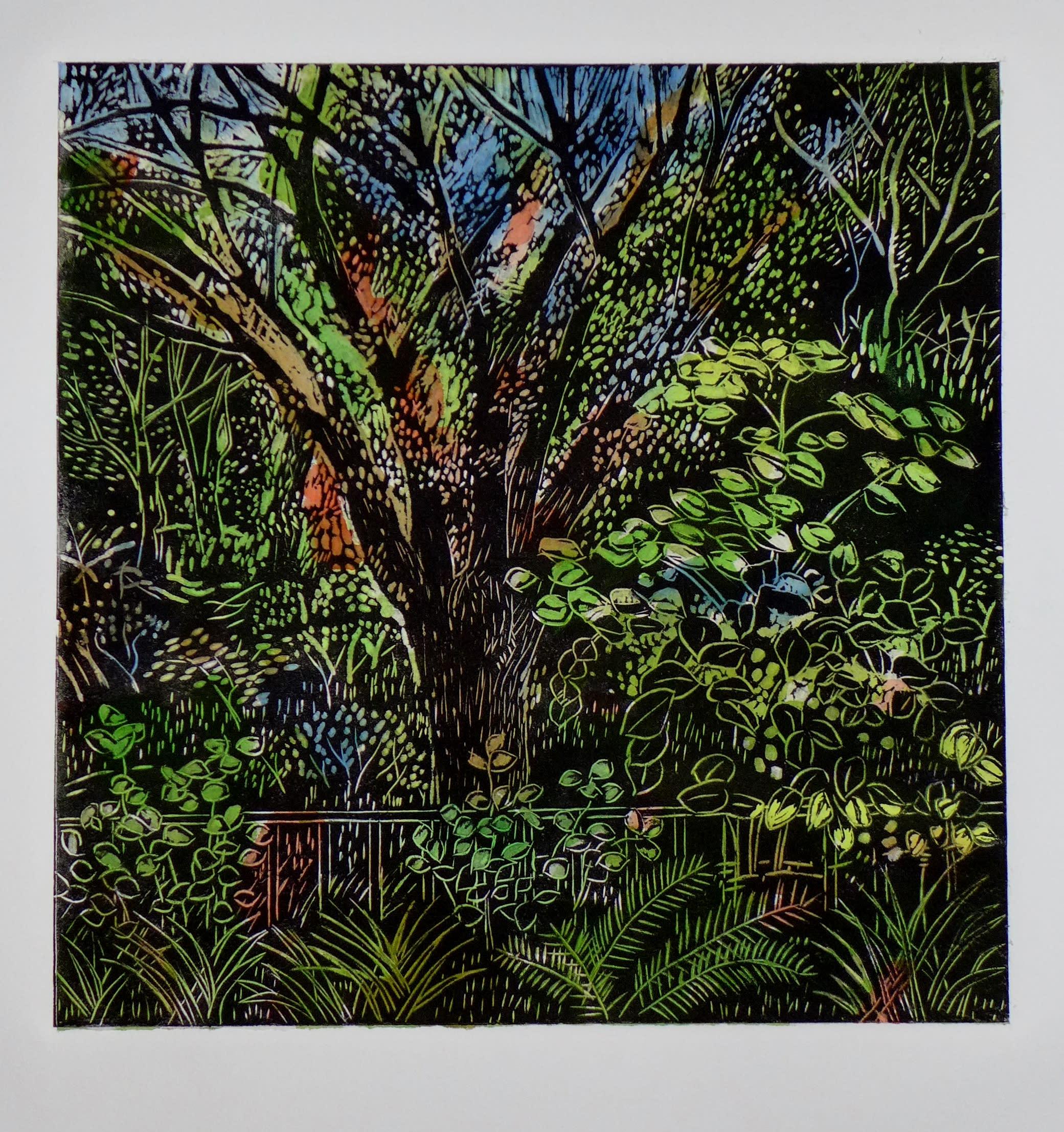 Main tree in my backyard landscape mtoswe