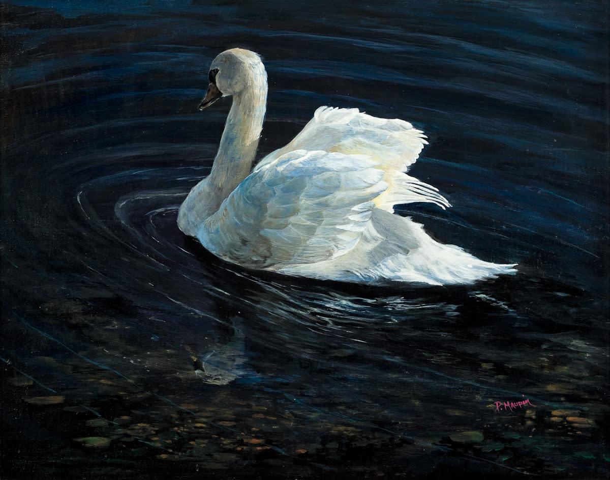 Swan lores jcipyh