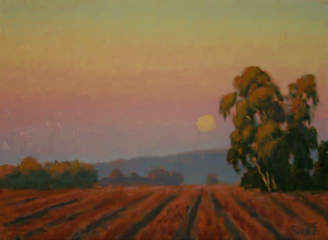 Vineyard moonrise werplk