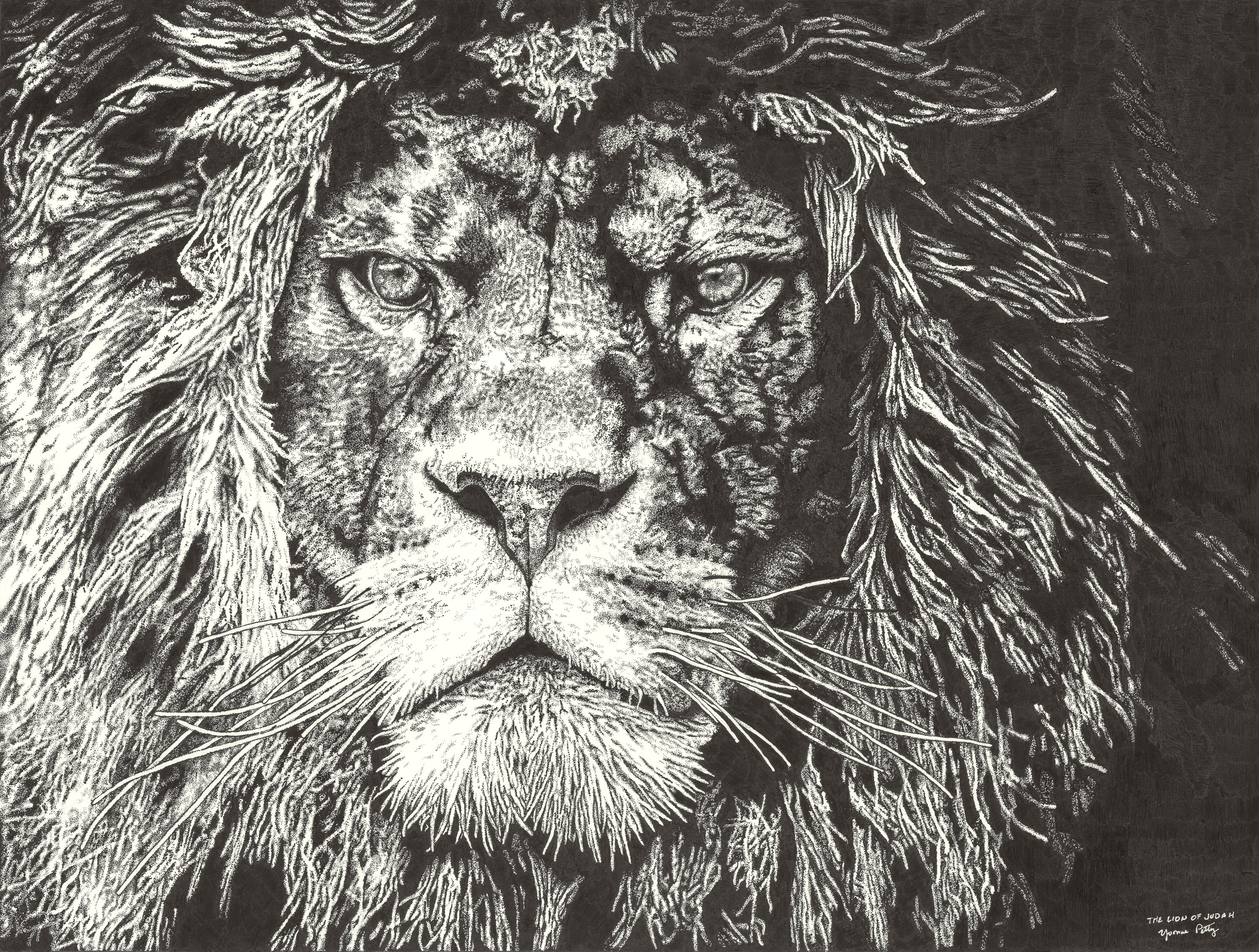 The lion of judah by yvonne petty 4000pixels at 300dpi fcfmbo
