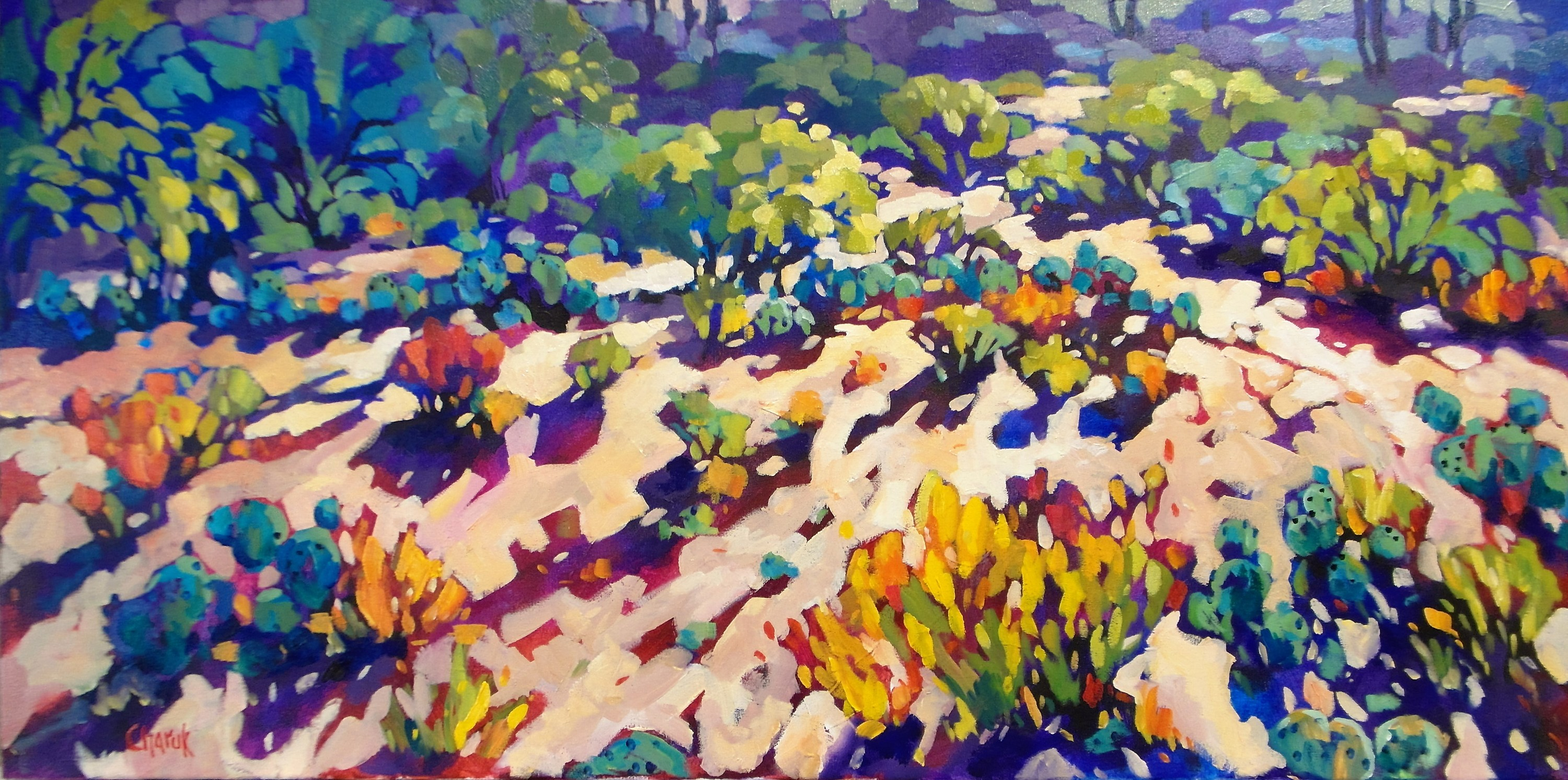 Here comes the sun 18 x 36 gocpsz