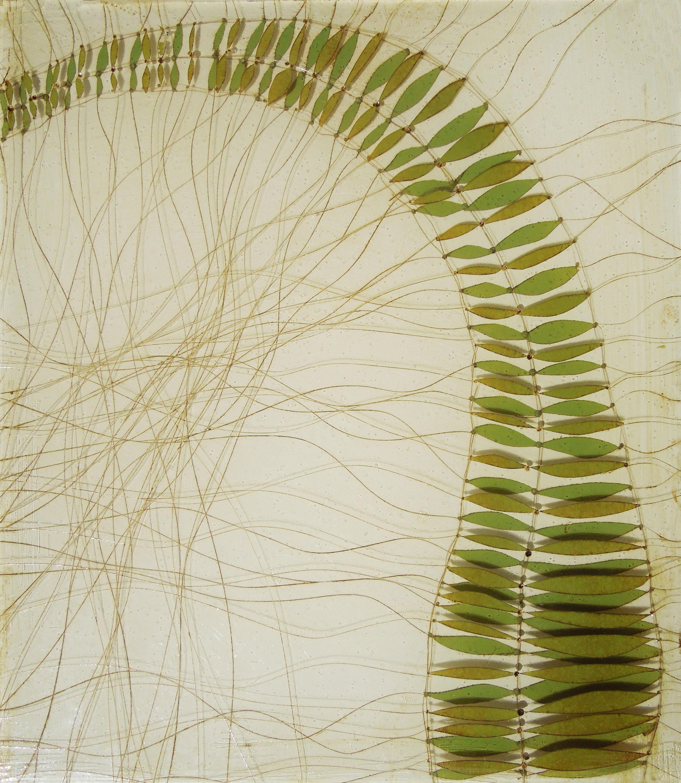Bending fern s8u8fa