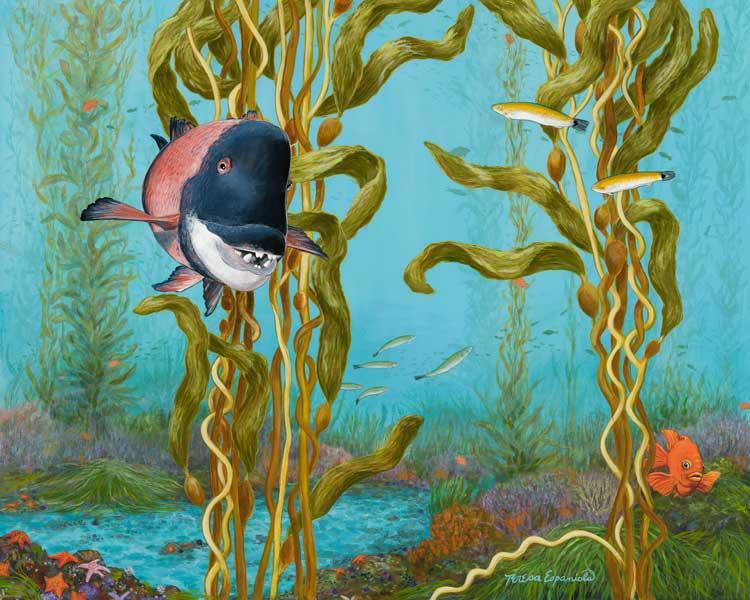 A-swim-in-the-kelp-beds-_web-30-600px_vfwhex