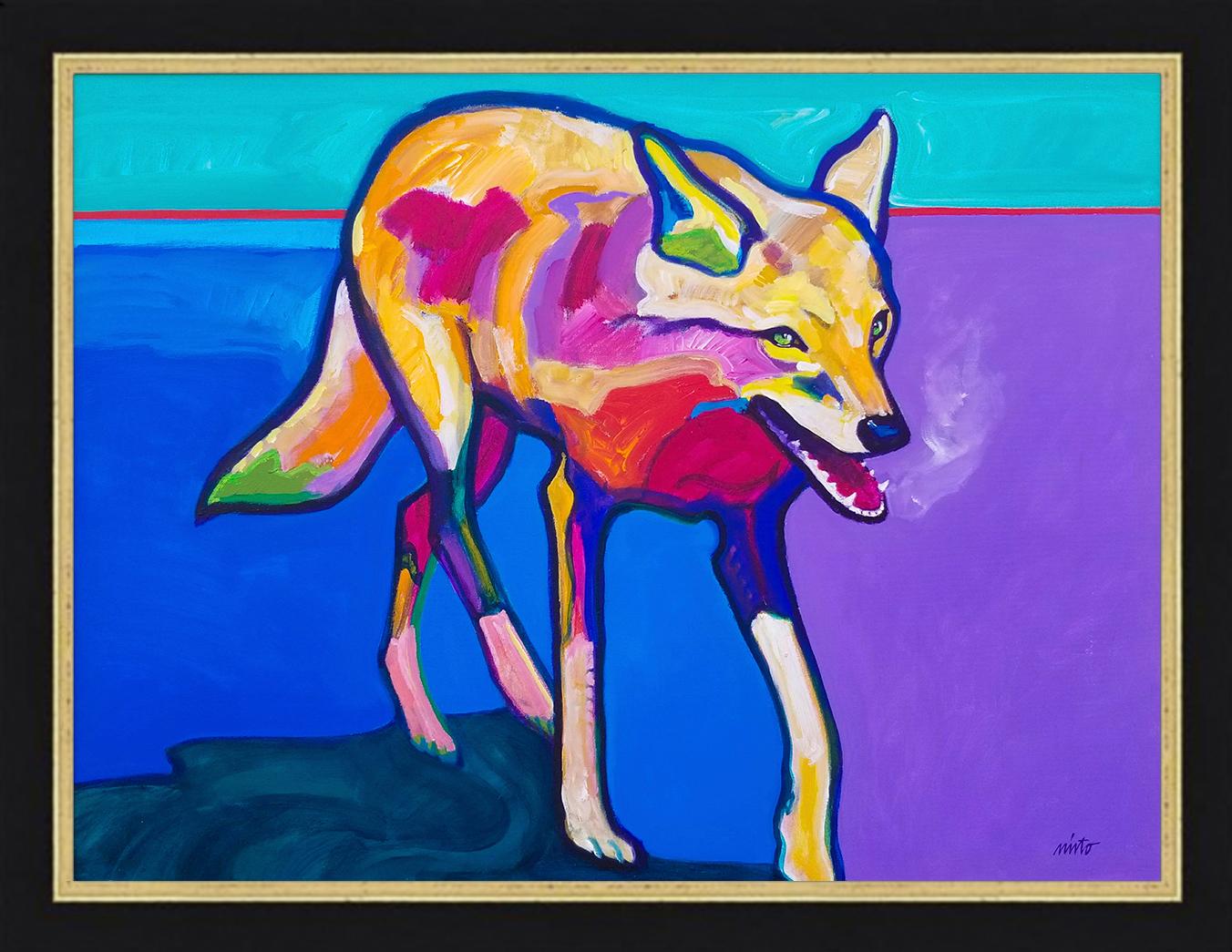 Coyote visitation framed g09shz