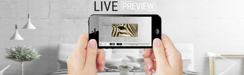 <div class='title'>           LivePreview Screen Mockup         </div>