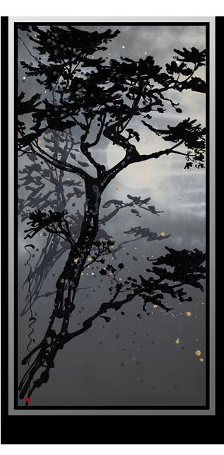 Moon shadows lytimv