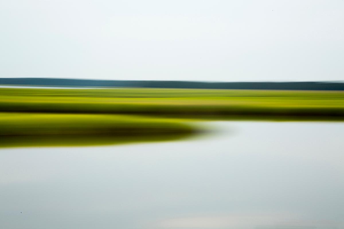 Green marsh coa h5sivv