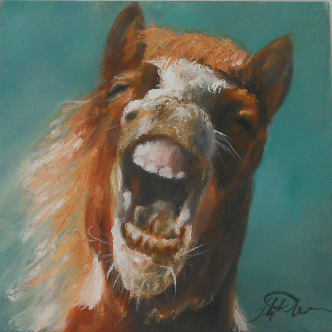 Horse laugh instagram 0159 wutu5w