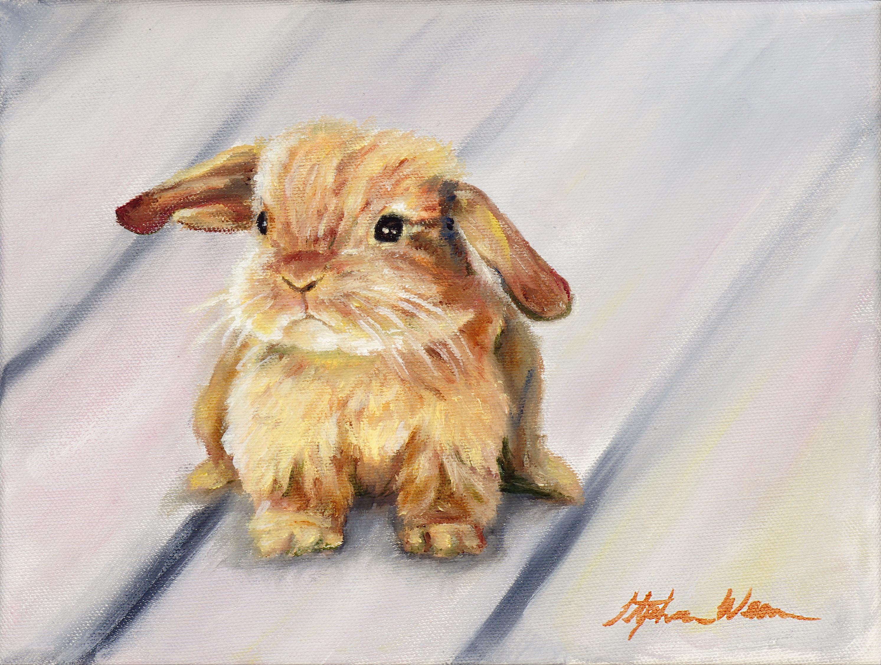 Bunny zonngk
