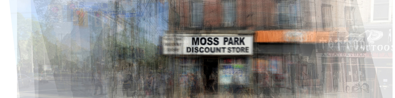<div class='title'>           moss park         </div>