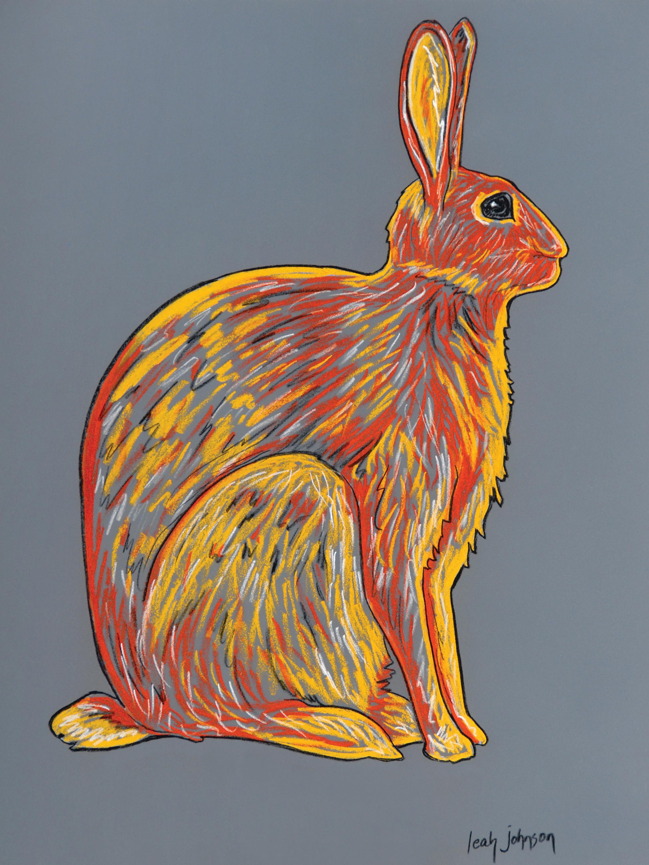 Rabbit orange mt9lce