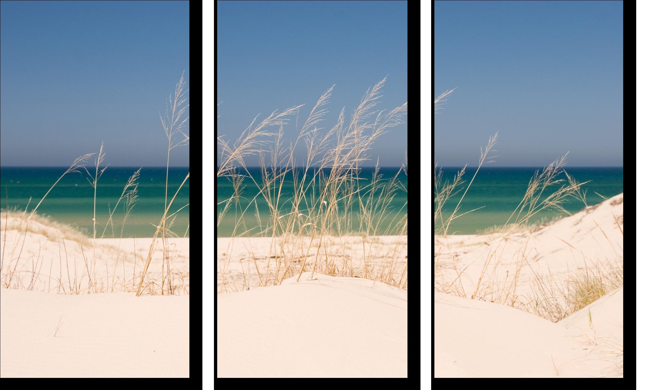 Dune grass and lake michigan tryptich olzdq8