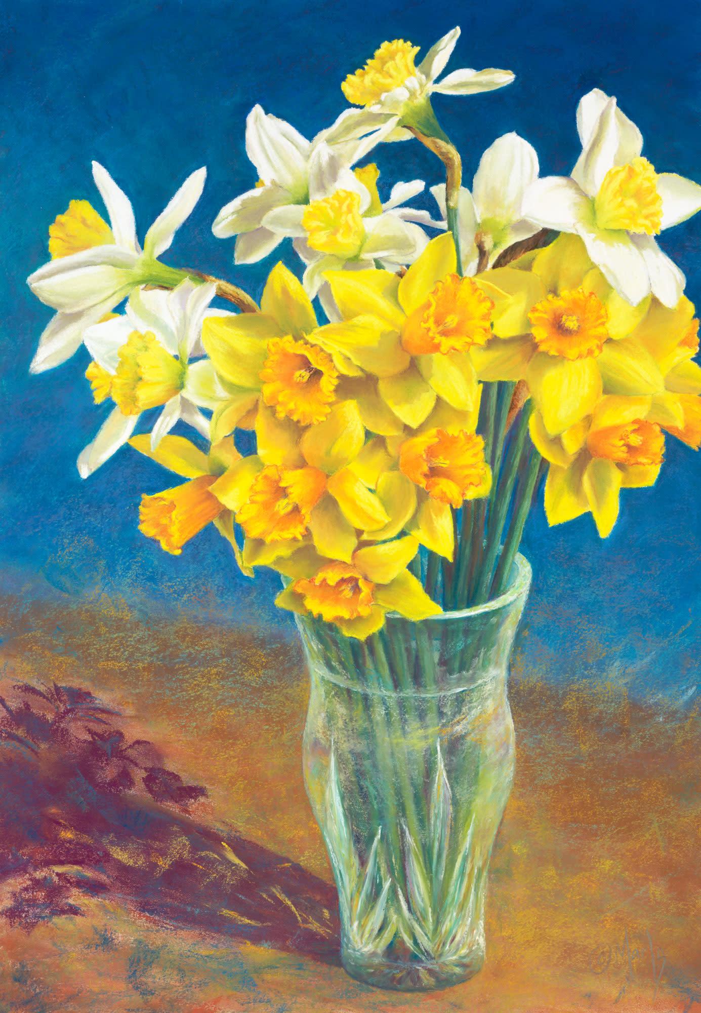 M millard 027 daffodil day c78ipl