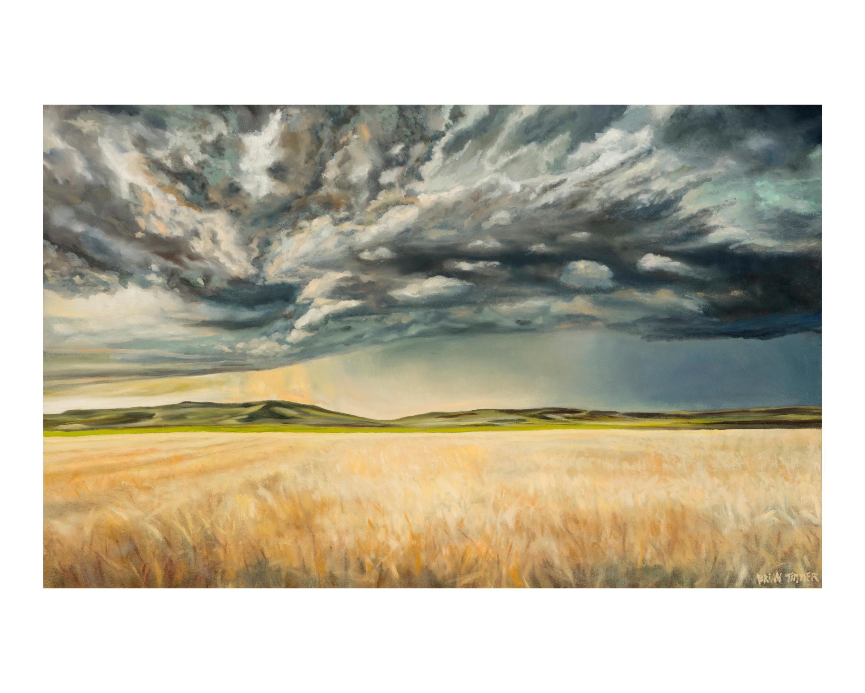 Kansas storm 16x20 iiomiq