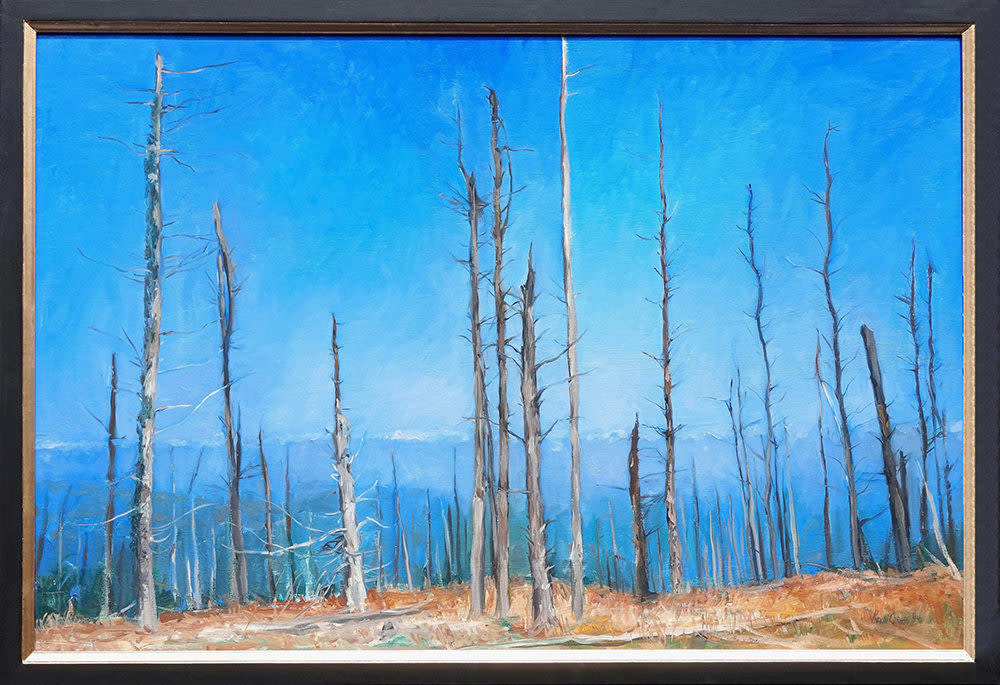 Kevin grass atop mount mitchell framed oil on canvas painting y0u6no