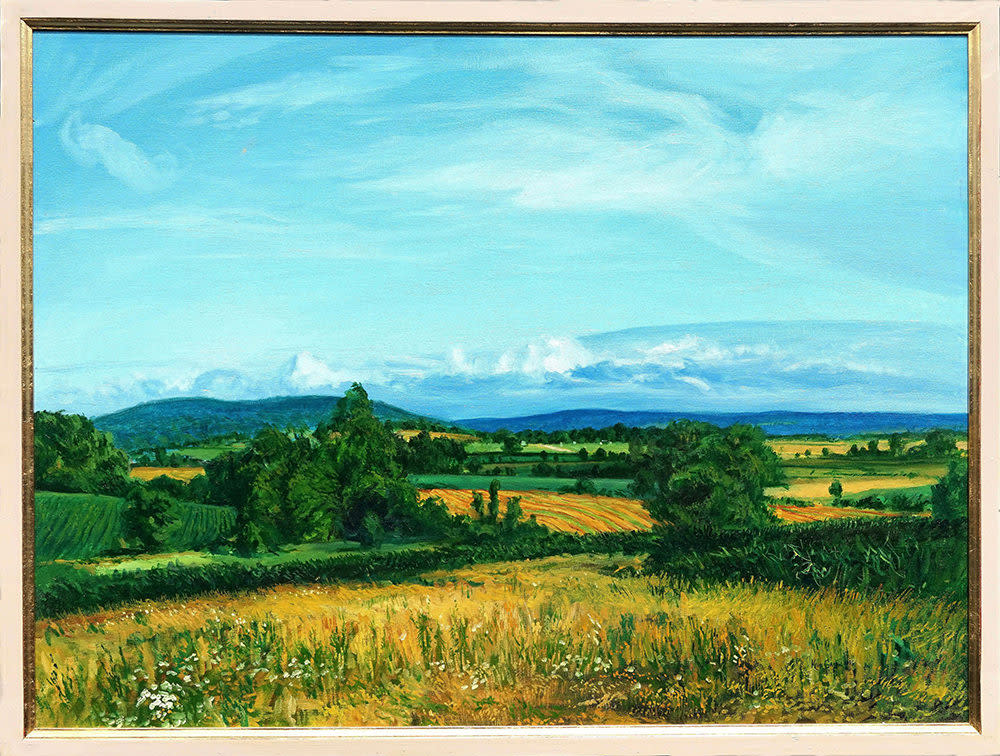 Kevin grass distant ozark foothills framed oil on canvas painting rcch12