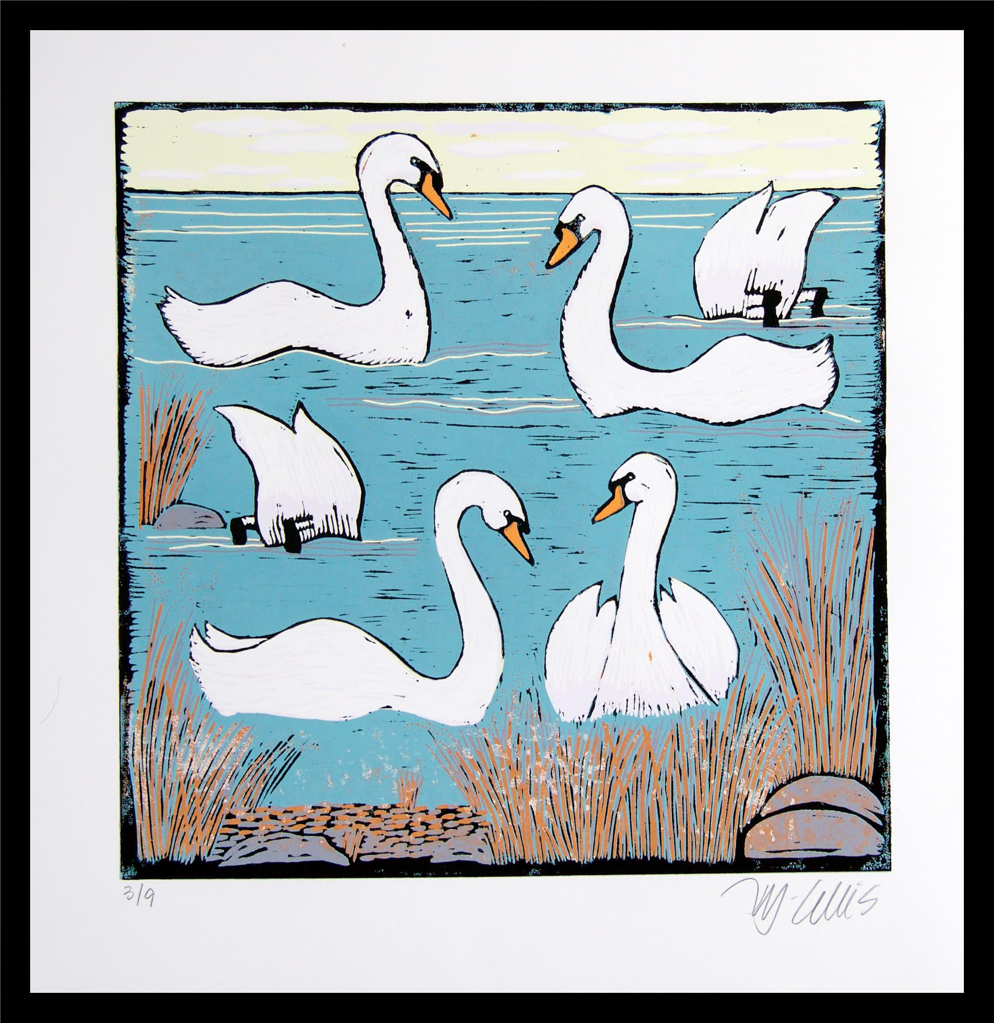 Swans morning framed yngzsb
