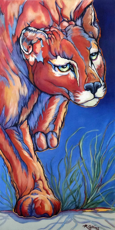 Puma fb wy6ced