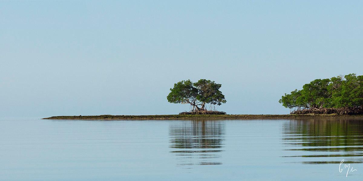 <div class='title'>                    </div>                 <div class='description'>           Photograph waterscapes from a boat         </div>