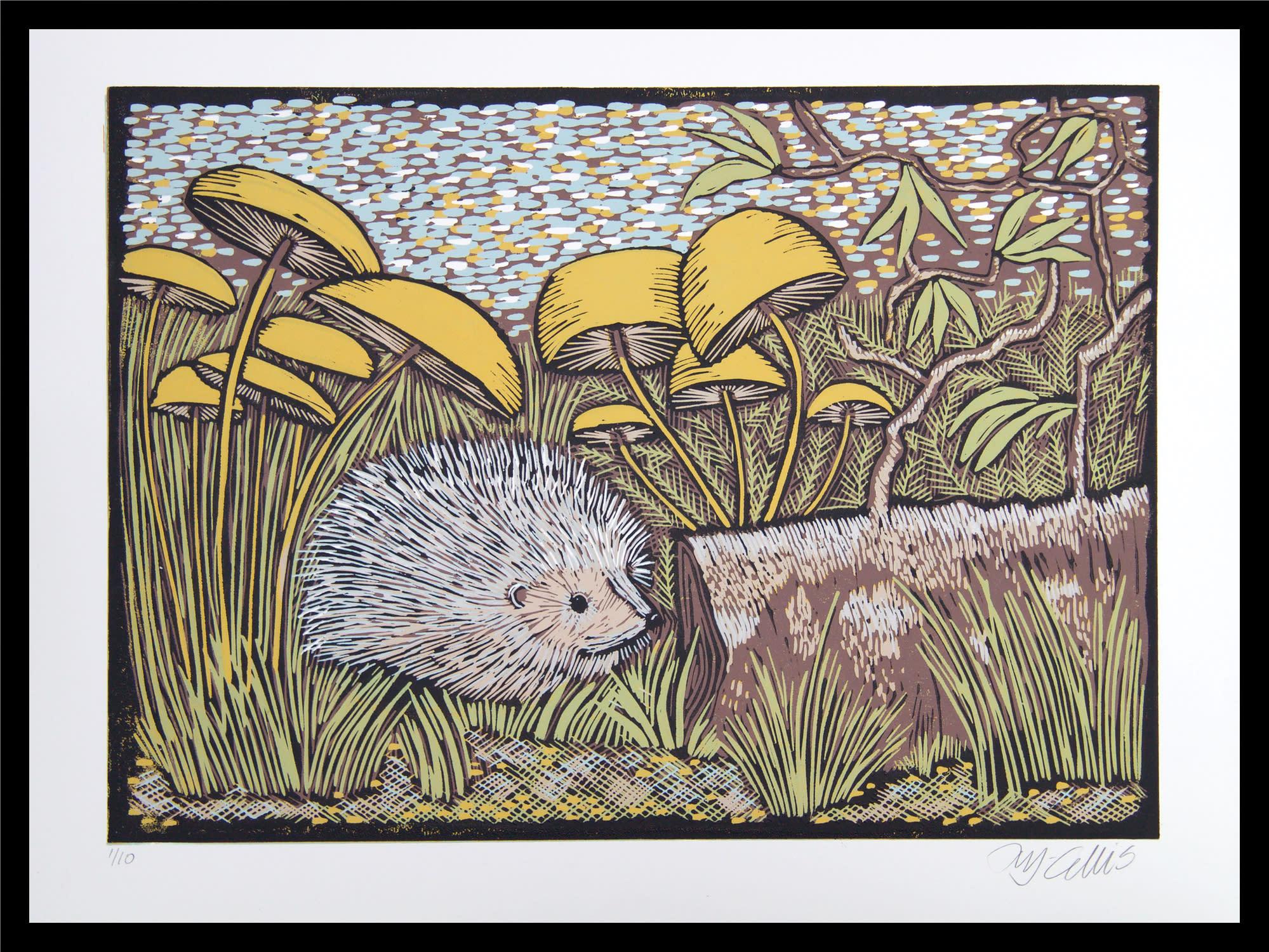 Hedgehog framed xxa3zd