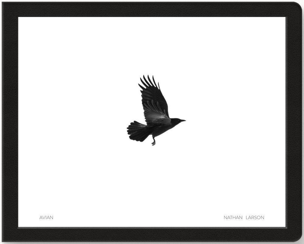 Avian book cover 2 vre83o