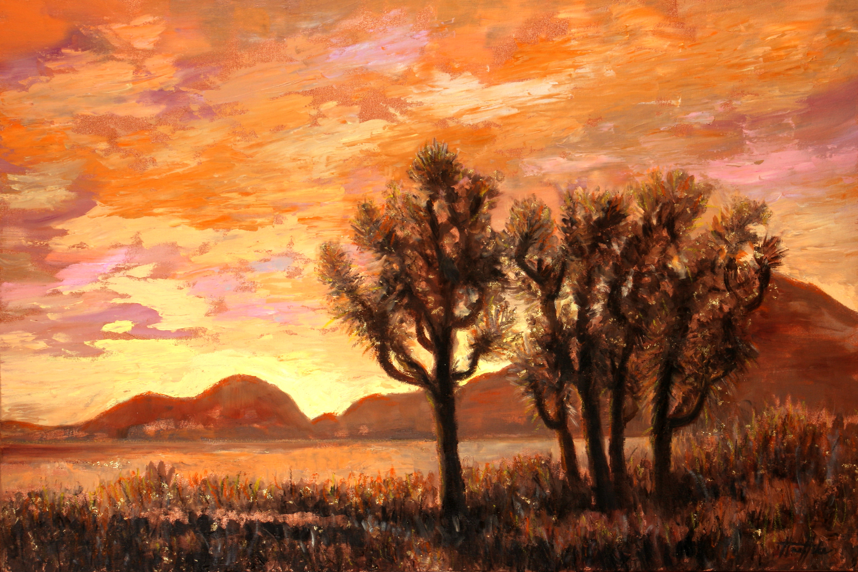 Sonoran desert joshua tree qvqiny