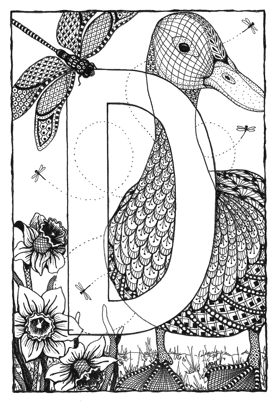 Alphabet  d d5eflc