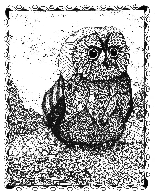 Owlet shc3ts