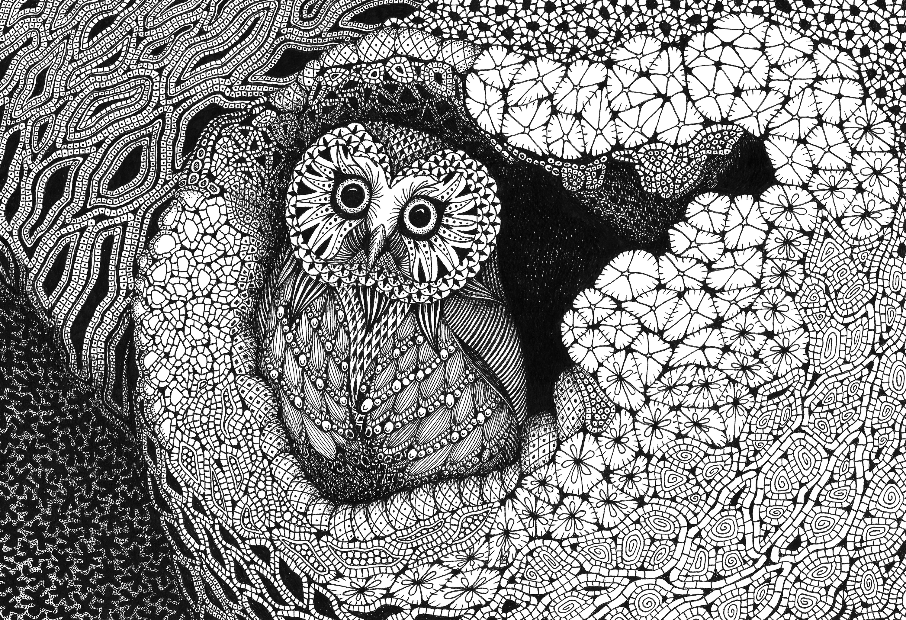 Owl in a hollow ftrucx